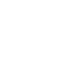 white bed bug icon